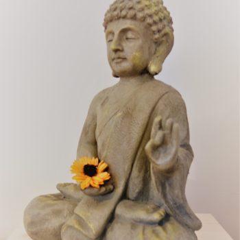 Der Buddha genießt die positive Energie!